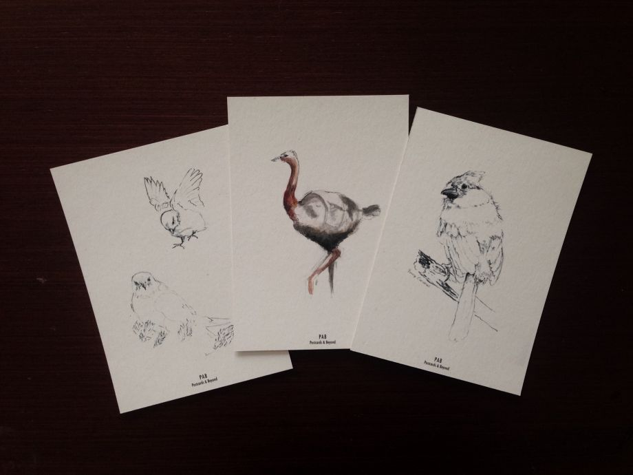 Postcard Set II * Bird Series