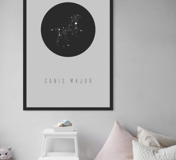 68x98cm Canis Major Poster