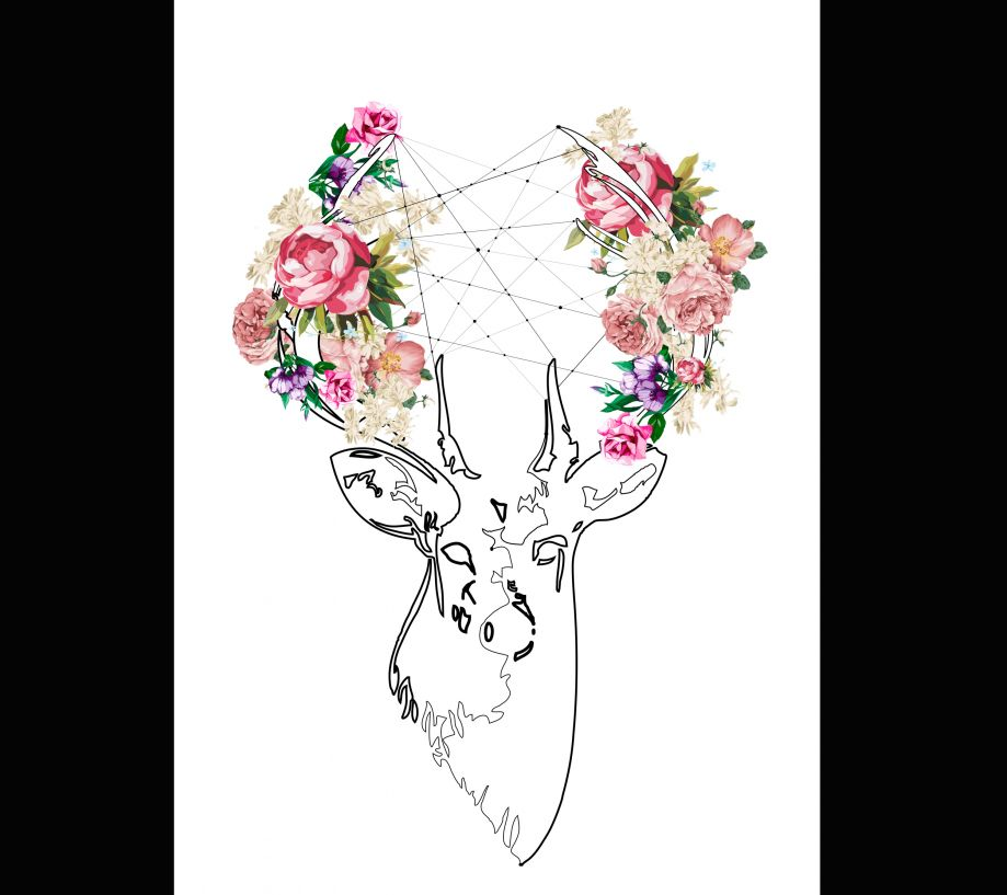 DEER Canvas Tablo