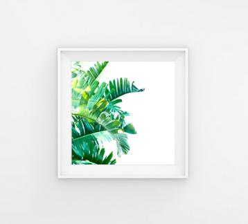 TROPICAL - 20x20 Poster