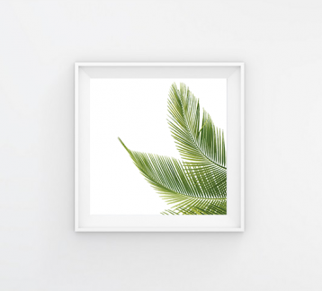 LEAVES - 20x20 Poster